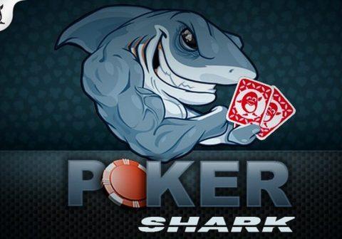 где играют в покер американцы